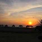 @instagram: #morjim #morjimbeach #from #marbellaguesthouse #goa #unique #expectations