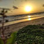 morjim goa sunset