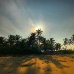 colva india goa beach morning trees