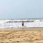 agonda india goa beach nature