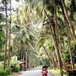 @instagram: Goa ????