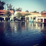 @instagram: #travel #to #goa #planethollywood #beachresort #swimmingpool #landscape #majorda