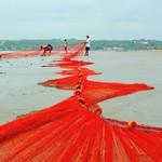 @instagram: Fishing at majorda Beach #majordabeach #majorda #fishing #fishingnet #evening #southgoabeach #southgoa