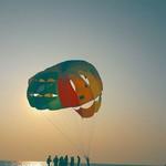 @instagram: #beach #majorda #Goa #jo26_edit #jo269_click