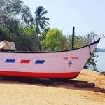 @instagram: #Cavelossim #india #Goa #отпуск2019???????? #март2019