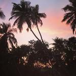 @instagram: #goasunset #morjim #вечерслюбимым
