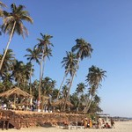 @instagram: #goa #morjim #beach #sun #relax #trip #pordosol