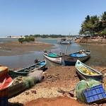 @instagram: Irgendwo bei Cavelossim  #goa #india #travelbirdie #travelblogger #travel #digitaknomad #digitalnomads #digitalnomadlife #digitalnomadstyle #digitalnomadlifestyle #cavelossim