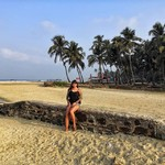 @instagram: Last day in this beautiful place???? #goa#india#relax#sun#ocean #bech#sand#palm#palmbeach#colvabeach#colva#индия#отдых#пляж#пальмы#солнце#океан
