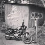 @instagram: #royalenfield #motorcycle #motorbike #blackandwhite #anjuna #fleamarket #hippie #hippy #hippymarket #goa #india #mirinda