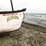 @instagram: Alleluia! #hallelujah #alleluia #goa #morjim #morjimbeach #fishingboat #india
