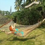 benaulim india goa holi