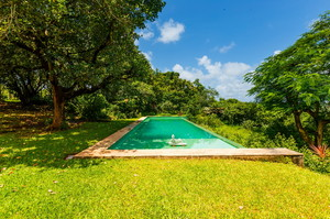 Jungle Villa 2 — Luxury villa for rent in Aldona
