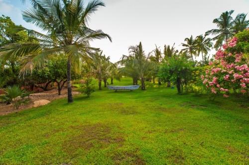 Large green garden